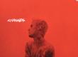 Intentions (feat. Quavo)