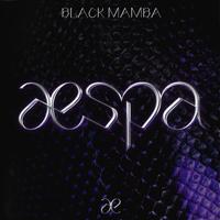 Download lagu aespa - Black Mamba