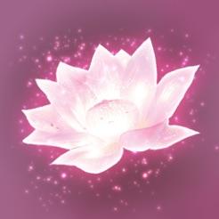 Lotus Digital