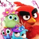 512x512bb - Angry Birds Match, juego de puzzles de las Aves enojadas!