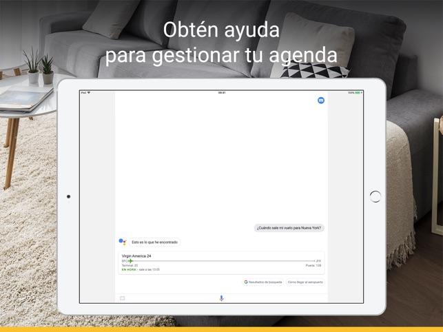 Asistente de Google Screenshot