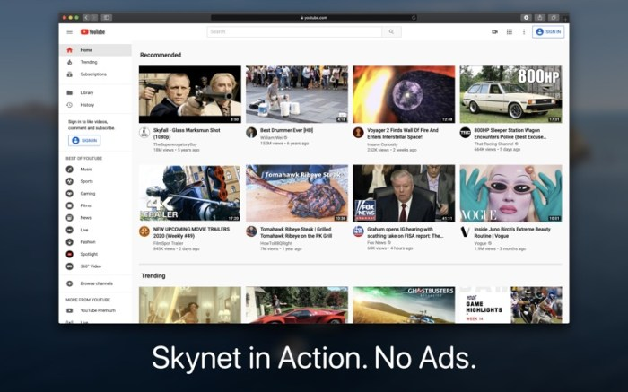 Skynet : Ad Blocker for Safari Screenshot 07 9ngciln