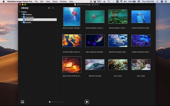 WidsMob Viewer Pro Screenshot 03 9ov19jn