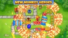 tipi di scimmia