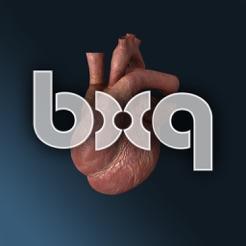 bodyxq heart