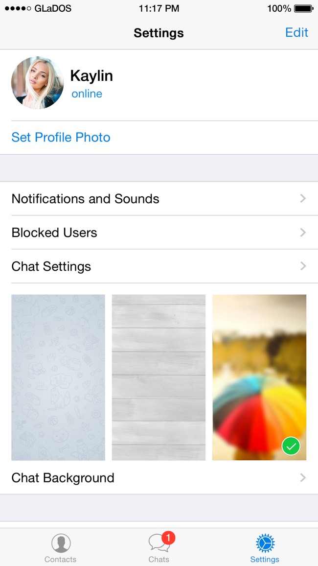 Telegram Messenger Screenshot