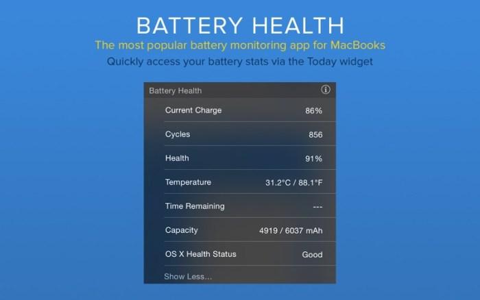 4_Battery_Health_Monitor_Stats.jpg