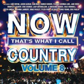Various Artists - NOW That's What I Call Country, Volume 8  artwork