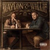 Jelly Roll & Struggle Jennings - Waylon & Willie  artwork