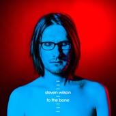 Steven Wilson - To the Bone artwork
