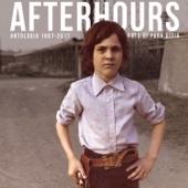 Afterhours - Foto Di Pura Gioia - Antologia 1987 - 2017 artwork