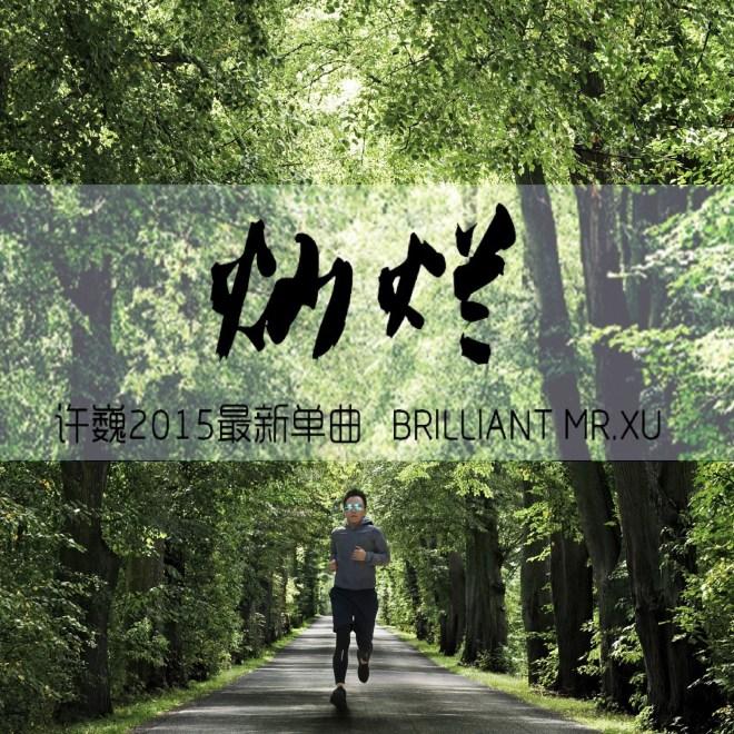 許巍 - 燦爛 - Single