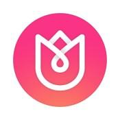 MocaDeco - Visual Creator