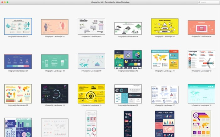 5_GN_Infographics_for_Adobe_Photoshop_Templates.jpg