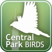 Audubon Bird Guide: Central Park