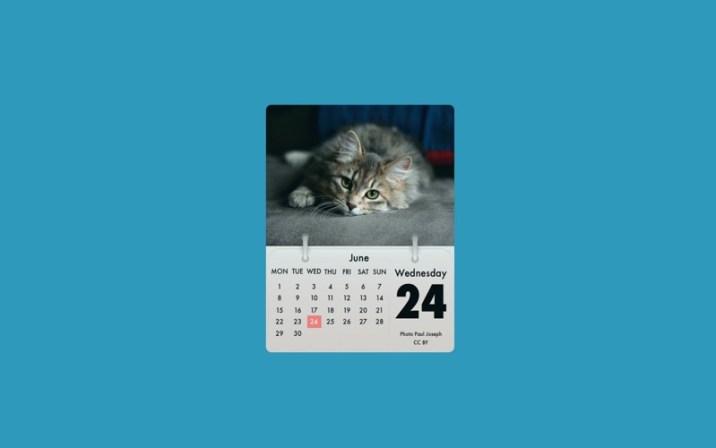1_Cal_Cat.jpg