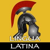 Lingua Latina: Verbs