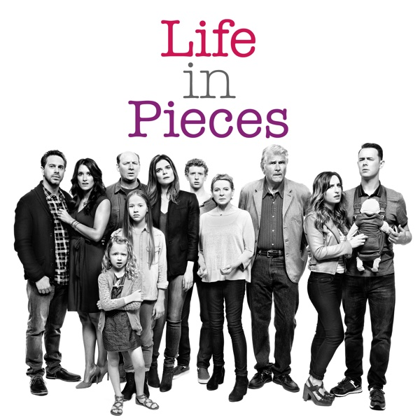 Image result for Life in Pieces