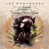 Joe Bonamassa - An Acoustic Evening at the Vienna Opera House (Live)  artwork