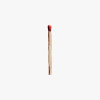 Rammstein - RAMMSTEIN artwork