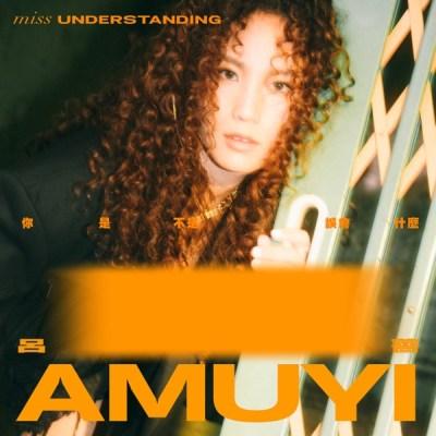 呂薔Amuyi - 你是不是誤會什麼 - Single