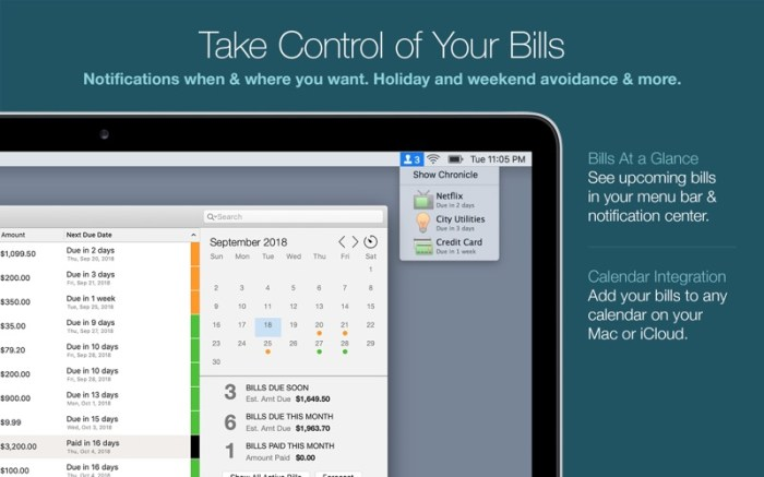 Chronicle Pro - Bills & Income Screenshot 06 12y9xgn