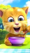 おしゃべり猫のトーキング・ジンジャー2スクリーンショット4
