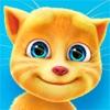 おしゃべり猫のトーキング・ジンジャーアイコン