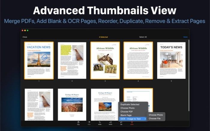 PDF Office Max: Acrobat Expert Screenshot 08 1356obn