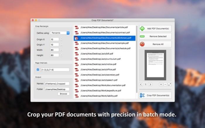 3_PDF_Plus_Merge_Split_PDFs.jpg