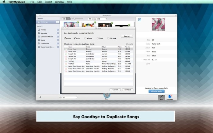 TidyMyMusic Screenshot 05 139h9rn