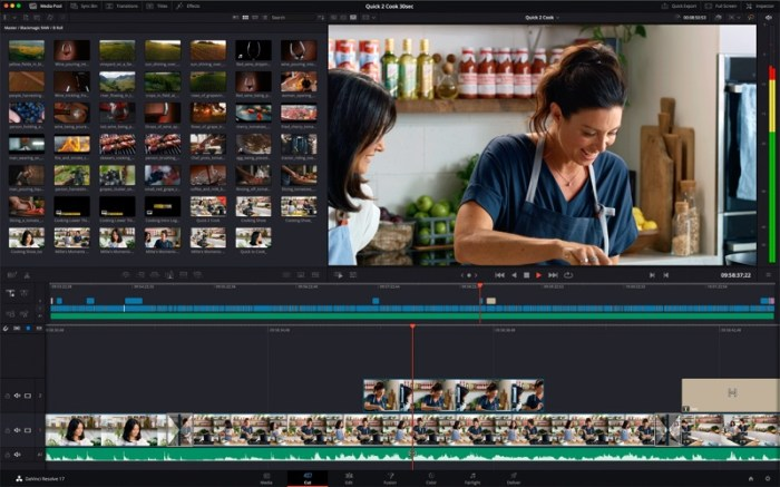 DaVinci Resolve Studio Screenshot 01 nqfj02y