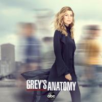Grey's Anatomy - Help Me Through the Night artwork