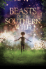 Benh Zeitlin - Beasts of the Southern Wild  artwork
