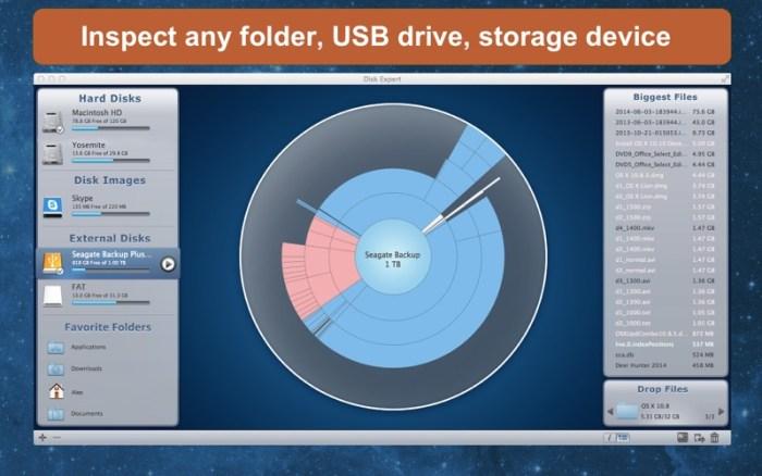 2_Free_Up_Disk_Space_DiskExpert.jpg