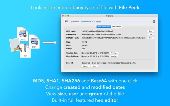 1_File_Peek_Hex_editor_hashes_date_changer.jpg