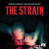 The Strain - The Strain, Season 1  artwork