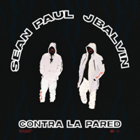 Sean Paul & J Balvin - Contra la Pared artwork