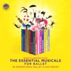 David Plumpton - The Essential Musicals for Ballet: 36 Inspirational Ballet Class Tracks  artwork