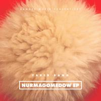 Farid Bang - NURMAGOMEDOW EP artwork