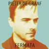 Pieter de Graaf - Fermata  artwork