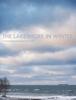 Jeff Curto - The Lakeshore in Winter  artwork