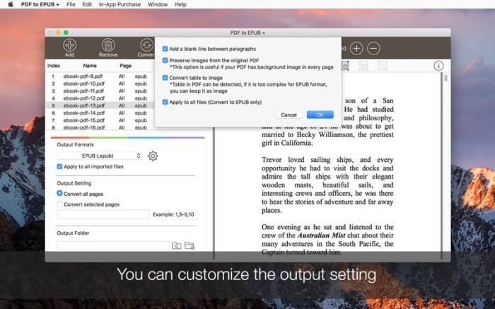 PDF to EPUB + Screenshot 03 f0tgf9n