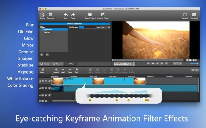 MovieMator Video Editor Pro Screenshot 03 rrts6cn