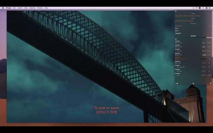 KPlayer Screenshot 5
