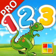 123 Numbers Flashcards PRO