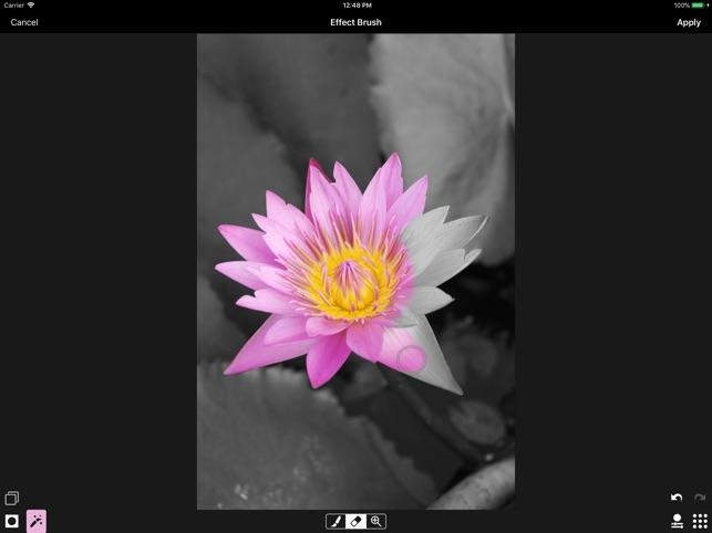 ACDSee Pro Screenshot