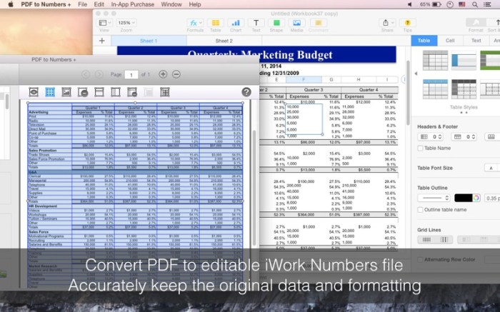 PDF to Numbers + Screenshot 03 xozmsn