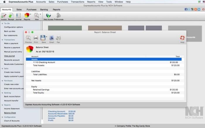 Express Accounts Plus Screenshot 04 1377vvn