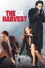 Harold Ramis - The Ice Harvest  artwork